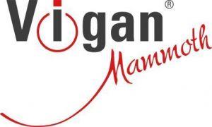 Smoothie nápojový mixér Vigan Mammoth SMT500WX černý, nerez, 2 lahve