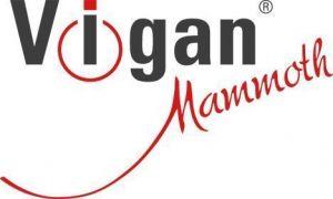 Zastřihovač vlasů a vousů Vigan Z6V1 VIGAN Mammoth