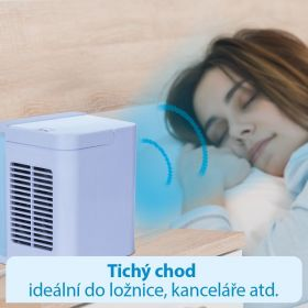 Livington Air Cooler Deluxe MEDIASHOP